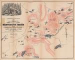 Adirondack Survey - 1873