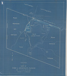 Type Map of Lot 11 Ford & Robinson Patent by W. D. Mulholland