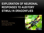 Exploration of Neuronal Responses to Auditory Stimuli in Dragonflies by Brian Shaw