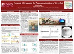 Focused Ultrasound for Neuromodulation of Crayfish by Jillian Yeager